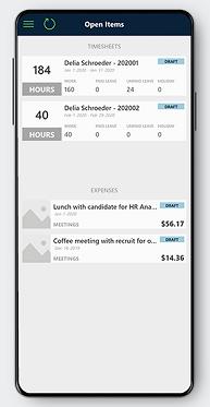 Dynamics 365 nonprofit accelerator timesheet mobile app